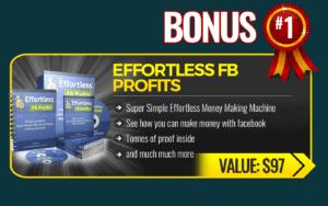 Bonus Effortless Fb Profits